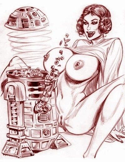 Star wars porn caricatures