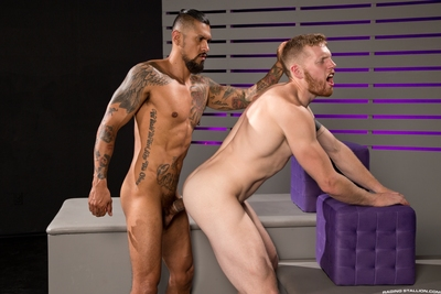 Boomer Banks and Cass Bolton sniff and lick, equally gravitating towards always other