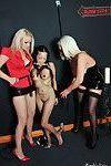 Busty lesbian threesome